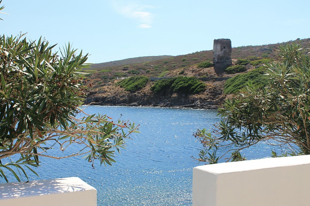 Porto Torres, «Preoccupati per il disimpegno di Forestas dall'Asinara»